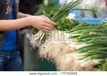 Bunches of spring onions on stall at the market