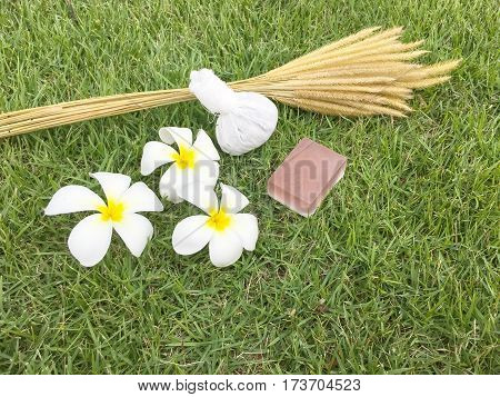 Thai herbal compress for spa with white plumeria flower (frangipani) and herbal Soap on green grass