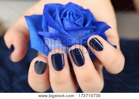 Nail art concept. Beautiful female hand with neat manicure holding blue rose