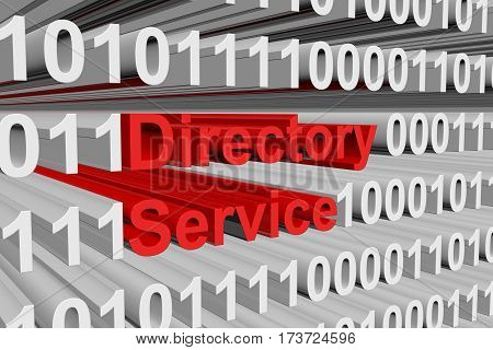 directory service is represented as a binary code 3d illustration