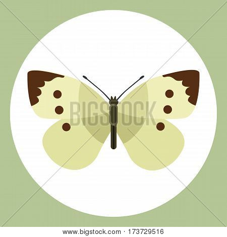 Insect icon flat isolated nature flying butterfly beetle ant and wildlife spider grasshopper or mosquito cockroach animal biology graphic vector illustration. Insecticide graphic cockroach bumblebee.