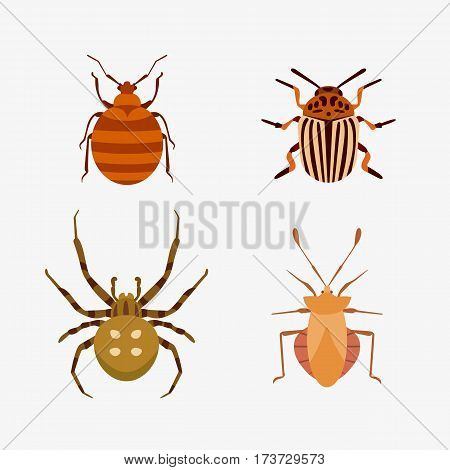 Insect icon flat isolated nature flying bug beetle ant and wildlife spider grasshopper or mosquito cockroach animal biology graphic vector illustration. Insecticide graphic cockroach bumblebee.