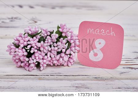 Flowers on wooden surface. Congratulation for dear women.