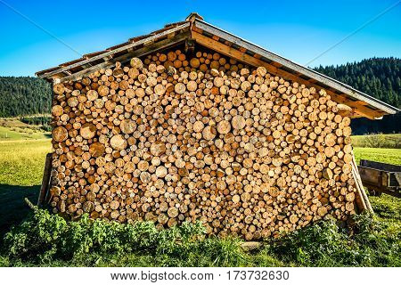 Pile Or Stack Of Natural Fire Wood Logs Under Roof.