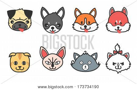 Set of dog and cat icons. Cute siberian husky, pug, corgi, chihuahua. Cartoony persian, naked, scottish cat