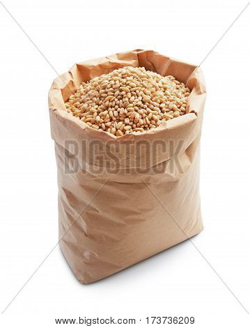wheat kernels in paper bag isolated on white