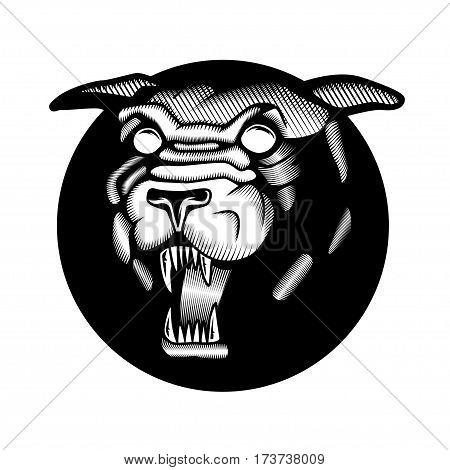 Tattoo Head Mascot Wildcat Angry Panther Sticker Emblem Sport Logo
