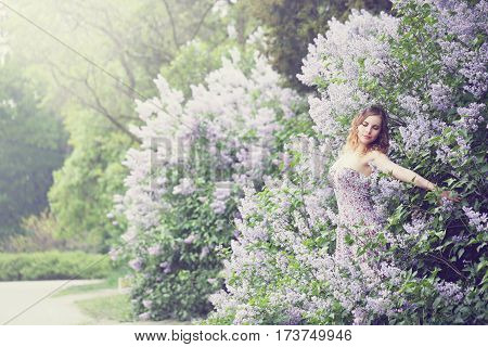 Beautiful woman in a spring garden with blooming lilacs, woman hugging lilac bush