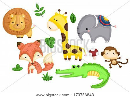 Colorful Animals with many type of animal