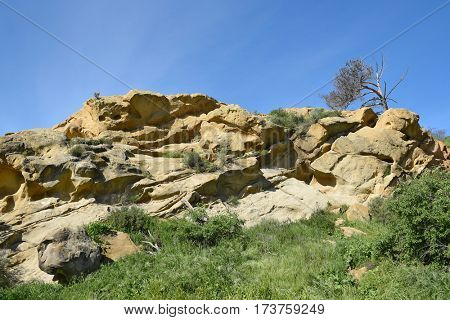 Rooster Rock a sandstone rock formation in Irvine Regional Park. The rocks are a favorite climbing spot for children and teens with many names and initials carved into the stone.