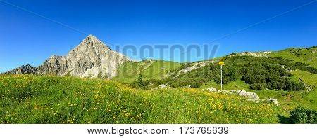 Hiking on flower meadow and steep mountain Geisshorn. A Signpost gives directions to the summit. Springtime or summer in the alps.