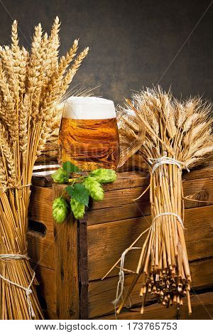 glass of beer and raw material for beer production