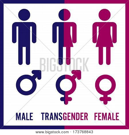 Transgender Male. Set Of Symbols. Isolated On White Background. Unisex. Stylized Human Icon Silhouettes. Stock Vector