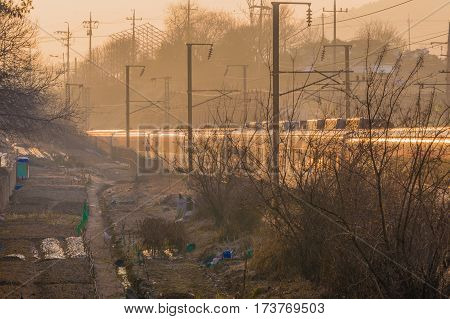 Train in the morning sun in rural area with trees shrubs and debris next to the tracks