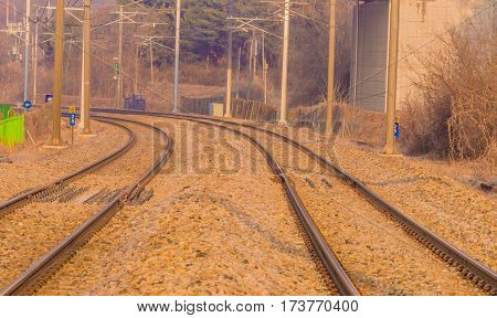 Two sets of train tracks in a rural setting running under a bridge with tress and bushes in the background