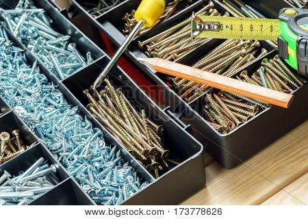 many screws in plastic organizer box top view