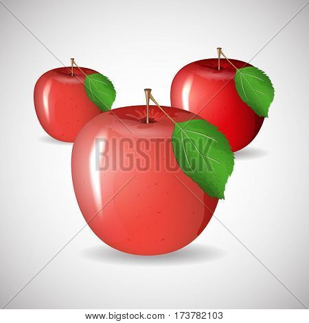 Juicy ripe apple red in vector format