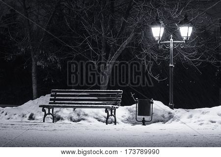 Winter nightscape, bench under winter trees and shining street lights under winter falling snowflakes.