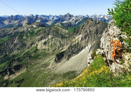 Great clear view from high mountain over other peaks. Some orange lichen und yellow flowers in the foreground. Alps, Bavaria, Tirol, Allgau.