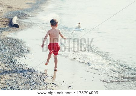 Funny adorable white Caucasian one young little boy in red swim shorts running on beach by water ocean sea with seagull view from back emotional lifestyle summer mood