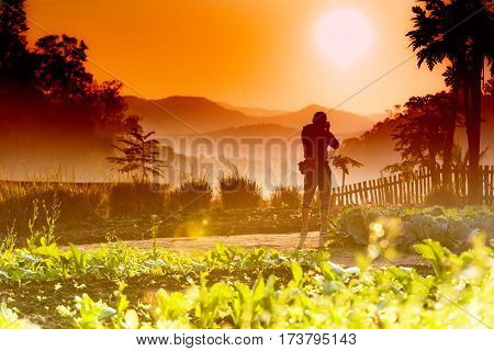 Silhouette Of Cameraman With Golden Light In The Morning.