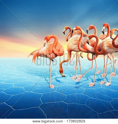 Compositing with a range of red flamingo at right side in the blue desert with a beautiful sunset sky