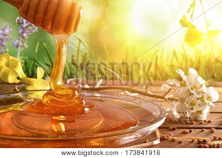 Honey Falling Into Glass Dish With Nature Background Sunny