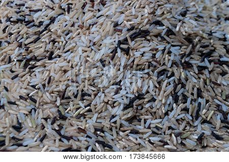 Multi grain rice mixed for healthy eating. Raw rice consists of mainly brown jasmine rice black riceberry rice and some white jasmine rice for better flavor to beginners.