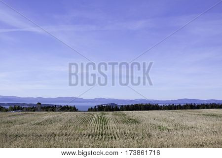 Wide view of concentric rows in a cut corn field off the Trans Canada Highway north of Quebec, City Quebec with the mountains along the shore of Baie Saint Paul in the background on a beautiful bright sunny blue sky day in September.