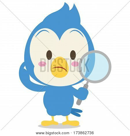 Blue Jay with magnifying cartoon vector illustration