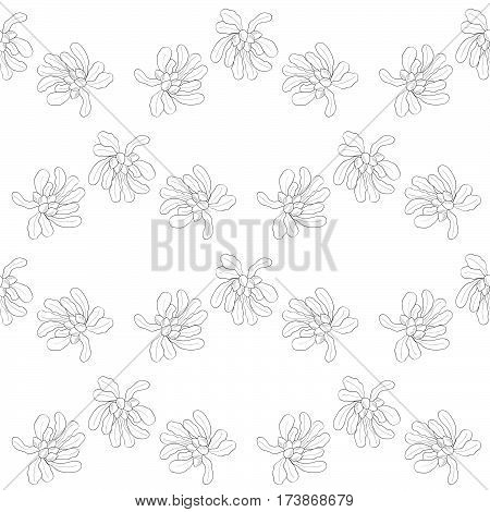 Shea tree nuts plant berry fruit natural organic butter ingredient. Hand drawn sketch illustration. Treatment cosmetics food ingredient seamless pattern