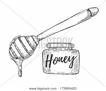 Honey jar and stick freehand pencil drawing isolated on white background vector illustration. Organic nature sweet product, delicious traditional food monochrome sketch. Honey icon in vintage style.