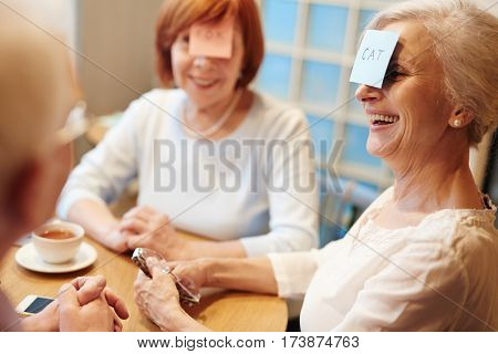 Senior females playing animals with sticky notepapers on foreheads