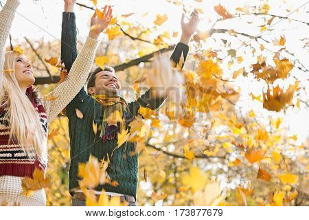 Young couple enjoying falling autumn leaves in park