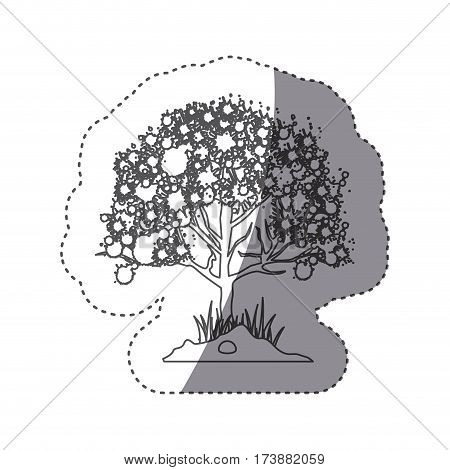 sticker silhouette leafy tree with ramifications vector illustration