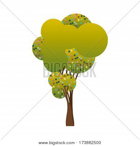 colorful silhouette little leafy tree with pixels square vector illustration
