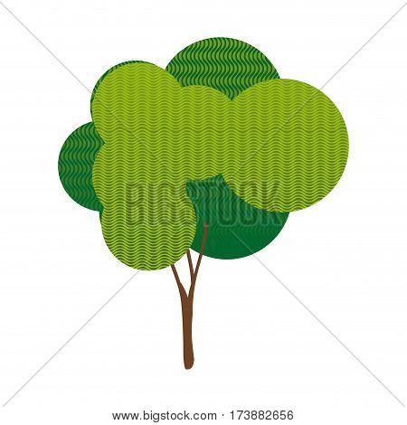 colorful silhouette leafy tree with wave lines vector illustration