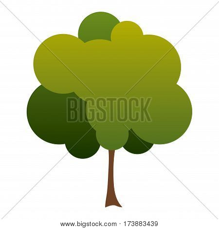 colorful silhouette small leafy tree with degraded leaves vector illustration