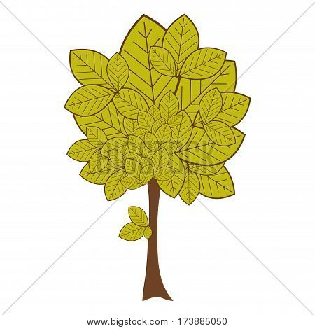 green leafy tree plant with large trunk vector illustration