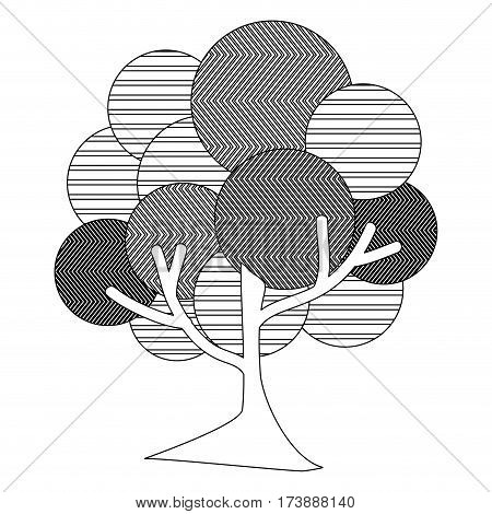 monochrome silhouette leafy tree plant with abstract lines and thin trunk vector illustration
