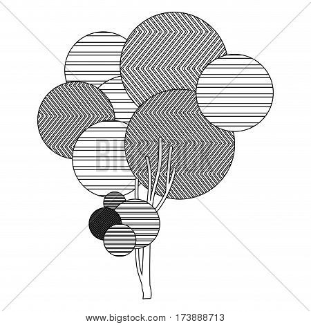 monochrome sketch high leafy tree plant with striped lines and thin trunk vector illustration