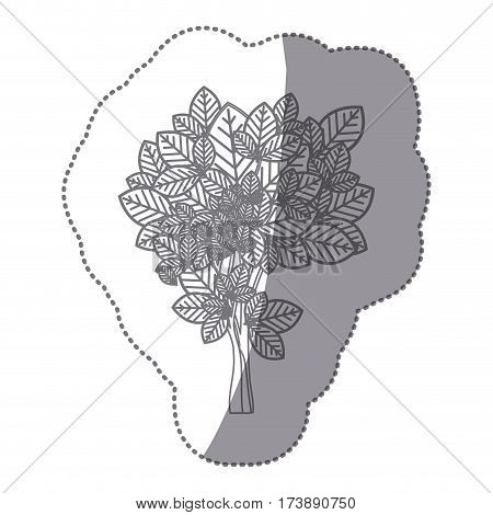 sticker gray color leafy tree with ramifications nature icon vector illustration