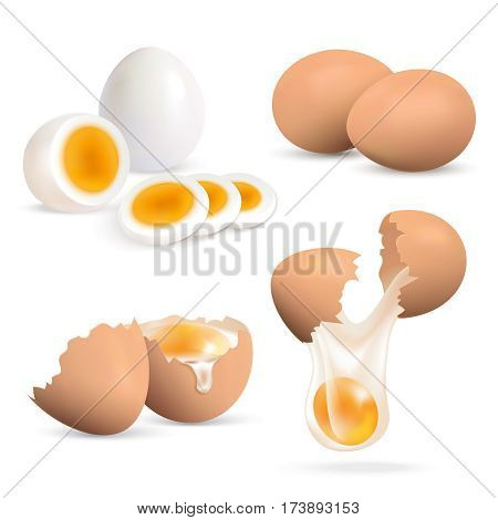 Hard boiled and raw eggs realistic set isolated on white background vector illustration