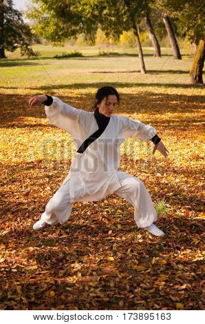 Woman training ki gong on field, color image