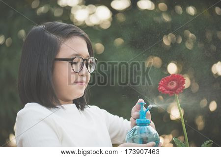 Beautiful Asian girl watering a red gerbera in the garden