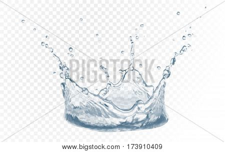 Water Vector Splash With Reflection