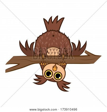 Set Vector Illustrations isolated character cartoon curious owl hanging upside down on a branch emoticons for site, info graphics, reports, comics