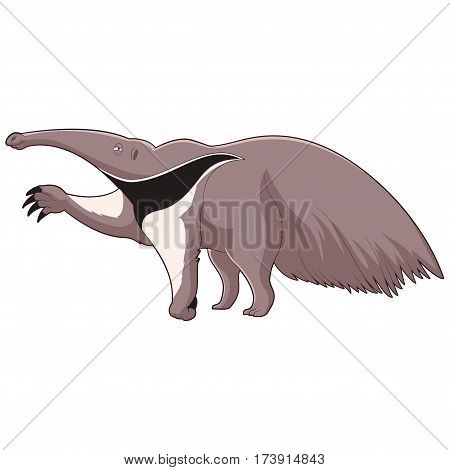 Vector image of the Cartoon smiling Anteater