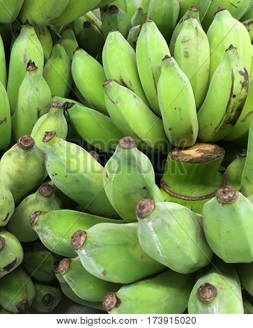 green bunches of Bananas in the market