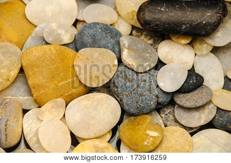 A close up of a group of rocks